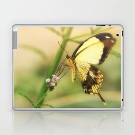 Exotic Butterfly natural beauty Laptop & iPad Skin
