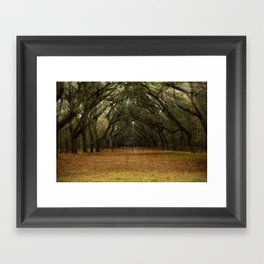 Enchanted Path Framed Art Print