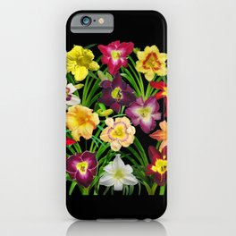 Display of daylilies I iPhone Case