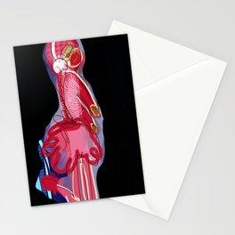Patti Stationery Cards