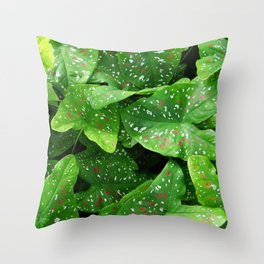 caladium Throw Pillow