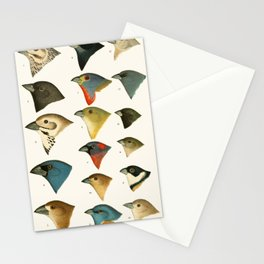 North American Birds Stationery Cards