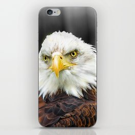 Bald Eagle iPhone Skin