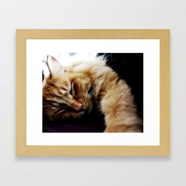 This lazy thing? Framed Art Print