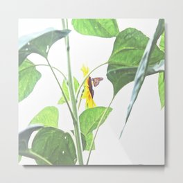 Butterflies on The Sun  Metal Print