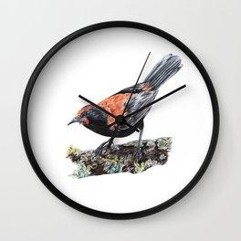 New Zealand Saddleback Wall Clock