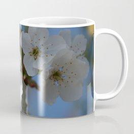 Close Up Of White Cherry Blossom Flowers Coffee Mug
