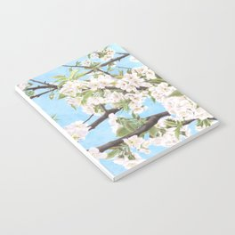 Spring is here Notebook