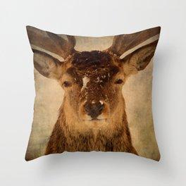 Deer In Headlights Throw Pillow