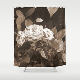 Roses III Shower Curtain
