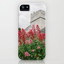Flowers of Muckross Abbey in Killarney, Ireland iPhone Case