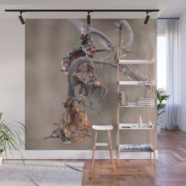 Withered rose hip Wall Mural