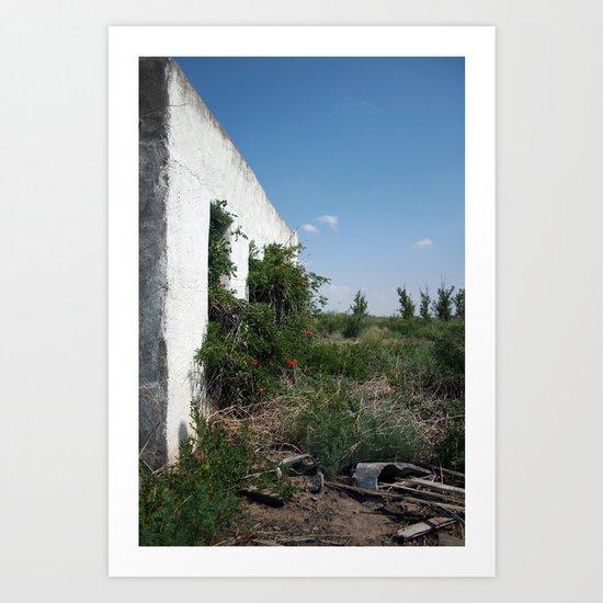 balmorhea, texas structure Art Print