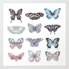 Butterflies in Blues Art Print