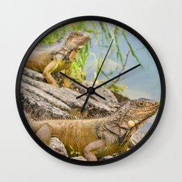 Iguanas at Shore of River Wall Clock