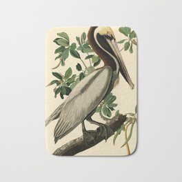 Brown Pelican (Pelecanus occidentalis) Scientific Illustration Bath Mat