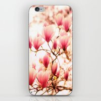 cherry blossoms iPhone & iPod Skins featuring Cherry Blossoms by Vivienne Gucwa