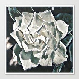 White Azalea Flower with Green Leaves Canvas Print