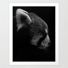 Red Panda Profile Art Print