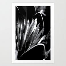 Just Grow Art Print