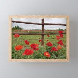 Poppies with Cedar Fence Framed Mini Art Print