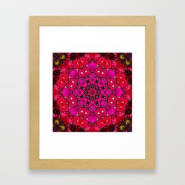 Garden mosaic kaleidoscope mandala - hot pinks Framed Art Print