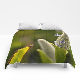 Flowered Catkin Comforters