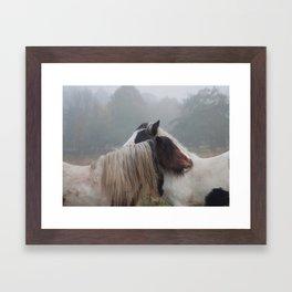 Two Horses Meeting Framed Art Print