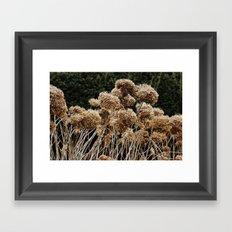 Tall + Fair Framed Art Print