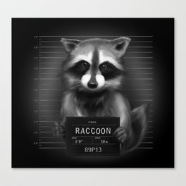 Raccoon Mugshot Canvas Print