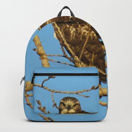 Redtail Hawk Backpack