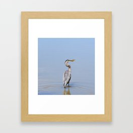 Great Blue Heron Fishing - I Framed Art Print
