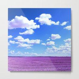 Purple Field Metal Print