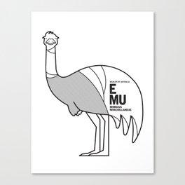 Emu, Wildlife of Australia Canvas Print