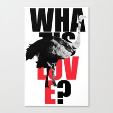 WIL? Ostrich Canvas Print