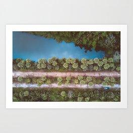 • Natures Recharge • Art Print