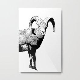 Ram Stamp  Metal Print