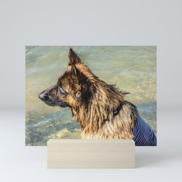 Wet German Shepherd Dog in a Sailor Suit Mini Art Print