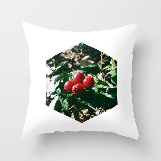 Spider Fruit Throw Pillow
