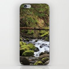 Paradise Creek III iPhone & iPod Skin