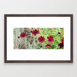 Reds deep affection Framed Art Print