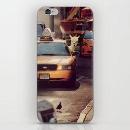 A LAMA IN NEW YORK ***  NEVER STOP EXPLORING VIII iPhone Skin