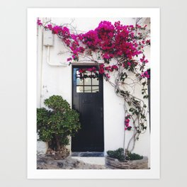 Bougainvillea door Art Print
