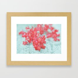 coral blossoms Framed Art Print