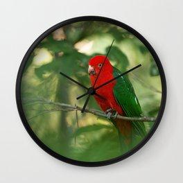 Australian King Parrot. Wall Clock
