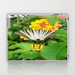 Scarce Swallowtail Feeding on Lantana Laptop & iPad Skin