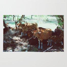 Gili Cows Rug