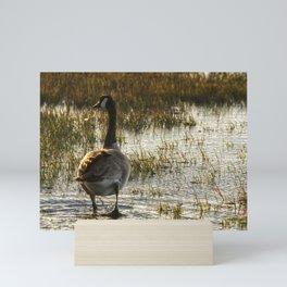 The Golden Goose Mini Art Print
