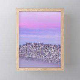 Foggy snow covered spruce forest at sunset Framed Mini Art Print