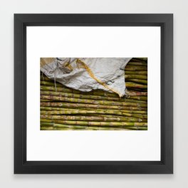 sugar cane Framed Art Print